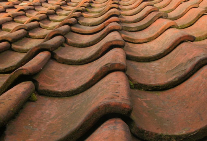 Roof Tiles by Liz Jones