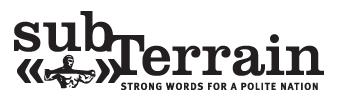 subTerrain Logo