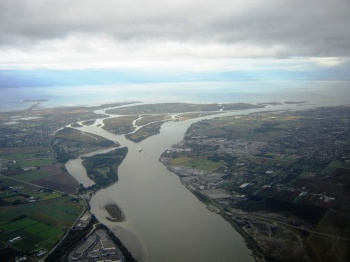 Delta South of Vancouver by Iwona Erskine Kellie