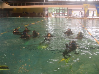 Diving Training by Ocean Quest Water Sports
