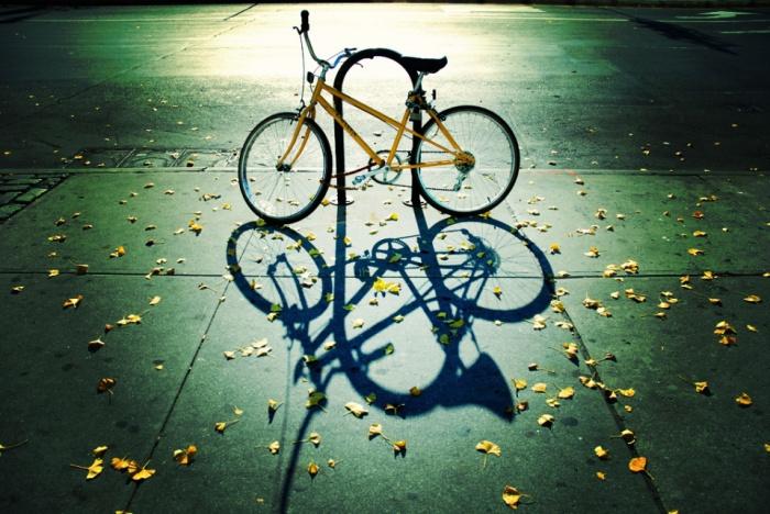 Autumn Cycle by Mo Riza