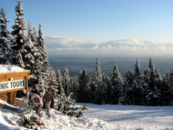 Grouse Mountain by Andrea Schaffer