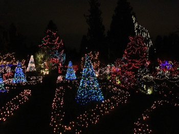 Van Dusen Festival of Lights by JamesZ Flickr