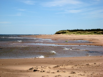 Summer Prince Edward Island by Michael Sprague