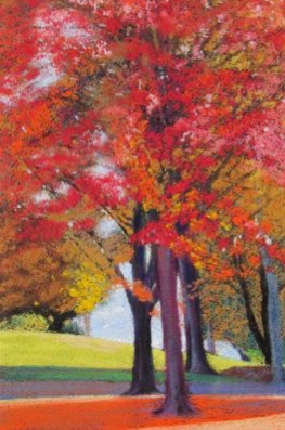 Autumn Color Maples by Masako Araki in Federation of Canadian Artists