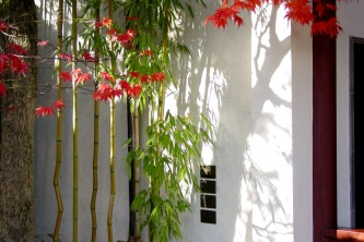 The Zen of Bamboo