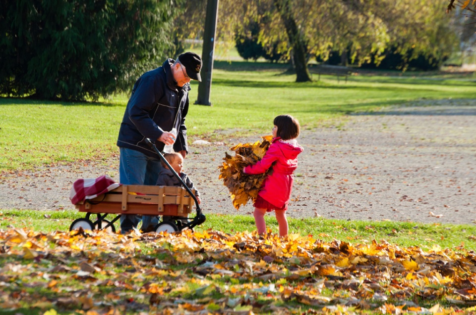 Children play with leaves in Trout Lake Park