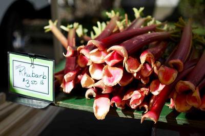 Rhubarb Farmers Market Vancouver