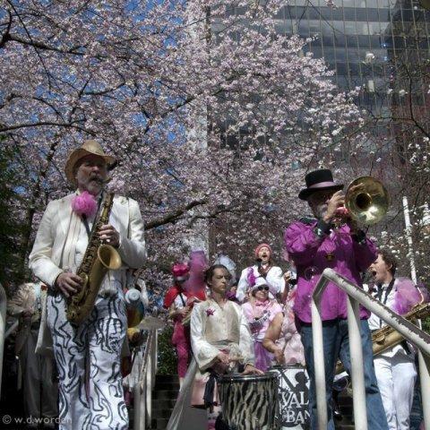 Vancouver Cherry Blossom Tree Festival1