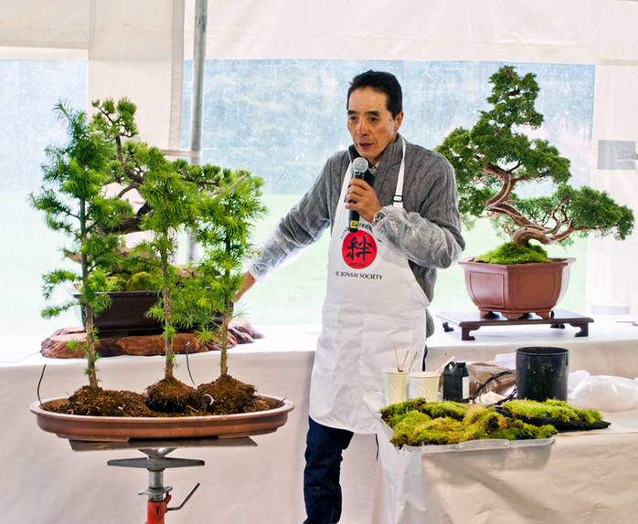 BC Bonsai Society presentation