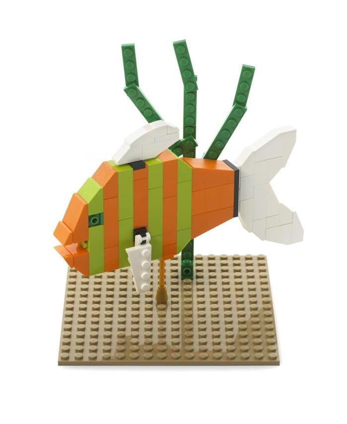 Fish lego