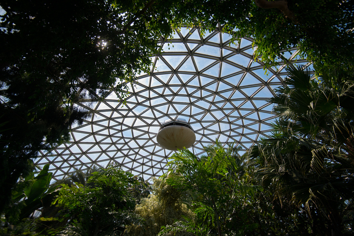 Glass Dome Of Bloedel Conservatory