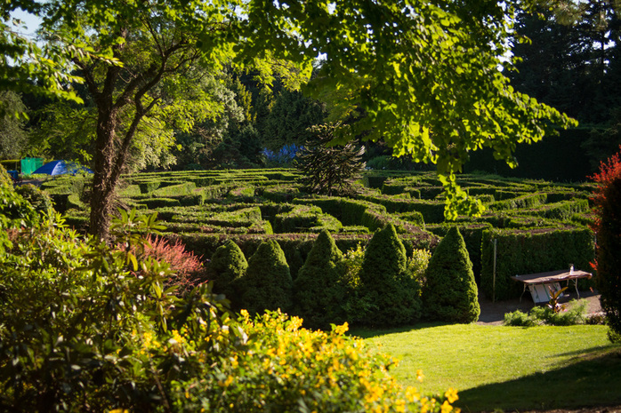 Green Labyrinth in VanDusen Botanical Garden