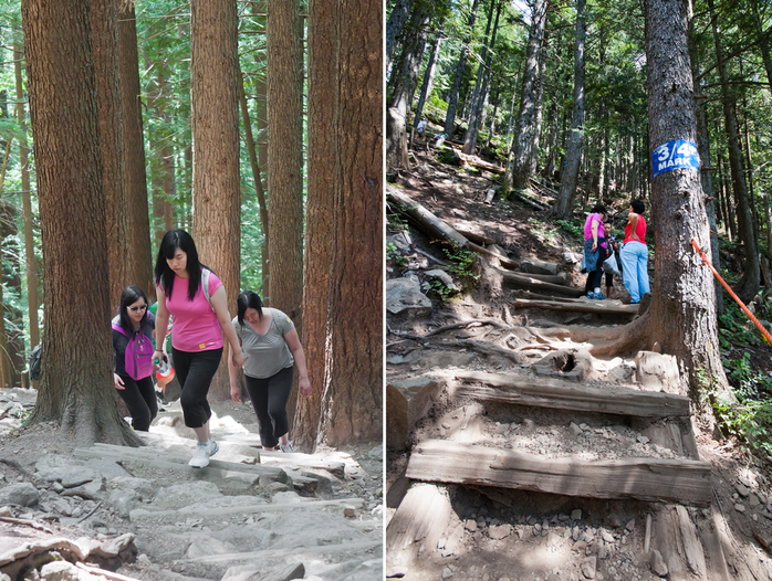 Grouse Grind Steps in Vancouver