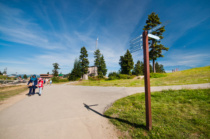 Grouse Mountain Trails