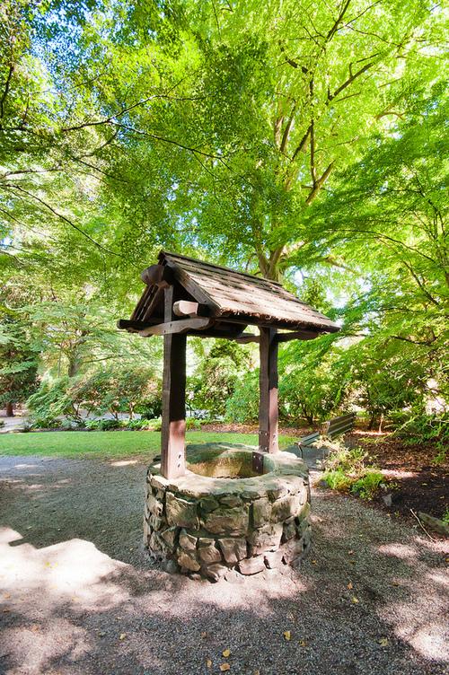 Stanley Park Gardens Well