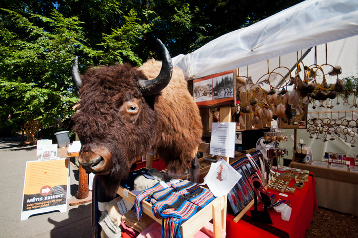 Klahowya Village Buffalo Head
