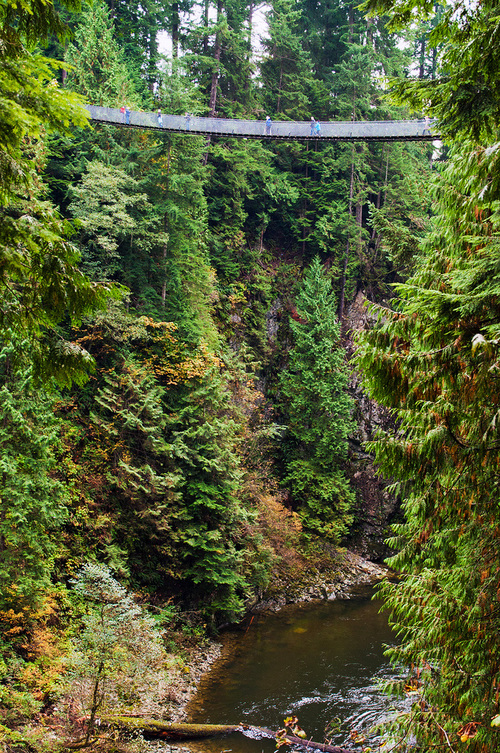 Capilano Suspension Bridge Hangs Over the River