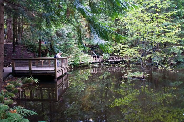 Capilano Suspension Bridge park Lake