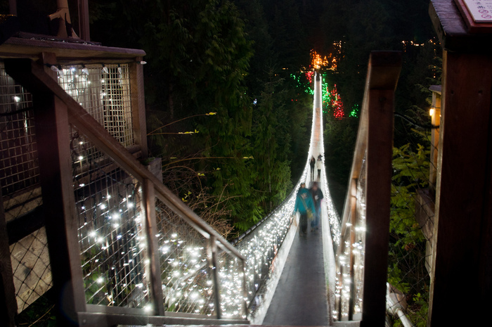 Capilano Suspension Christmas Light22