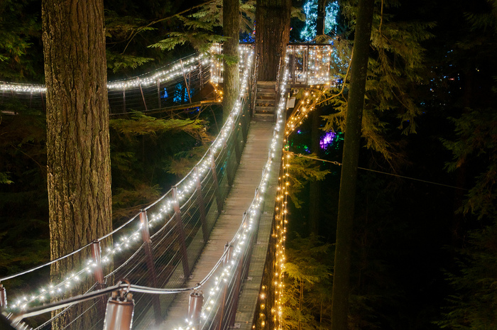 Capilano Suspension Christmas Light32