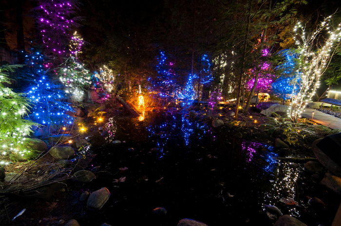 Capilano Suspension Christmas Light33
