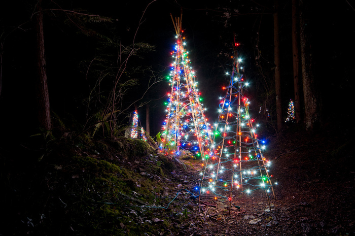 Capilano Suspension Christmas Light39