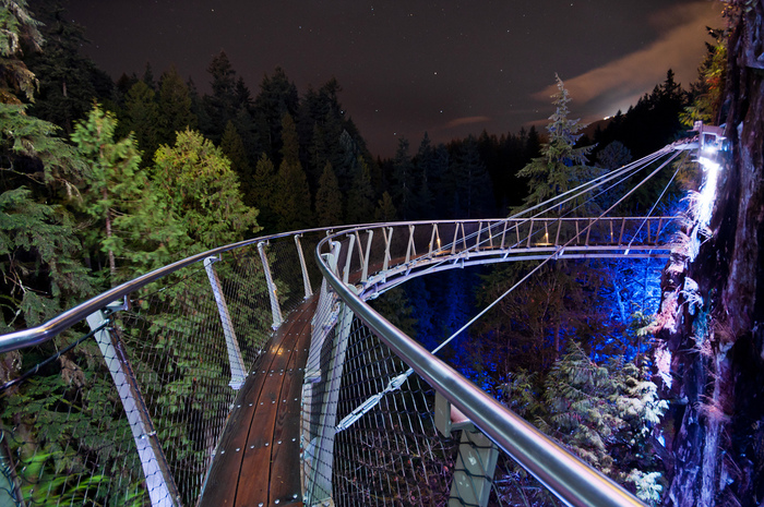 canyon lights  capilano suspension bridge photo essay