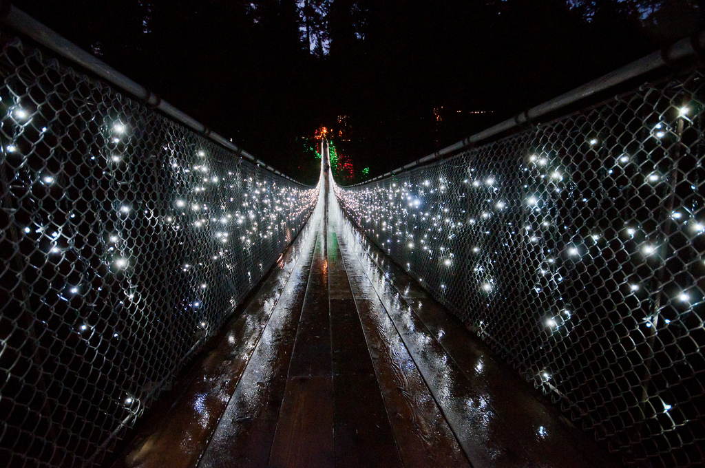 Canyon Lights: Capilano Suspension Bridge Photo Essay Vancouver Homes - Decorating Homes For Christmas