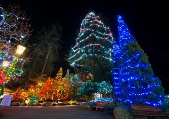 Capilano-Suspension-Christmas-Light7