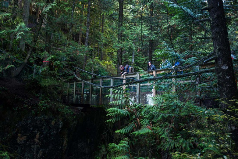 Lynn Valley Pipe Bridge