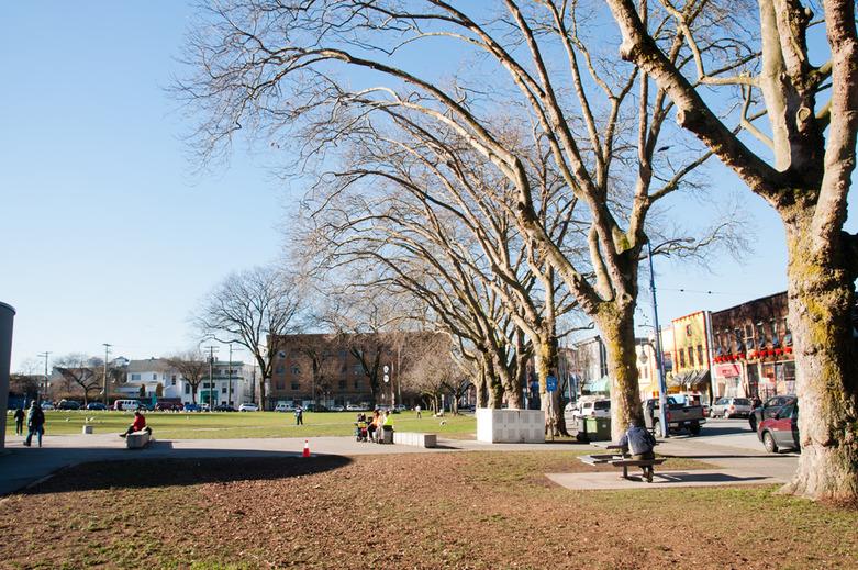 Oppenheimer Park Strathcona