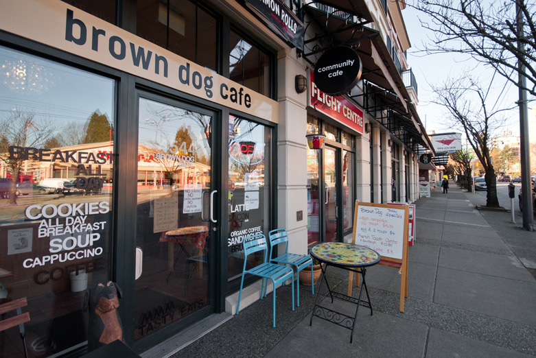 Point Grey Dog Brown Cafe