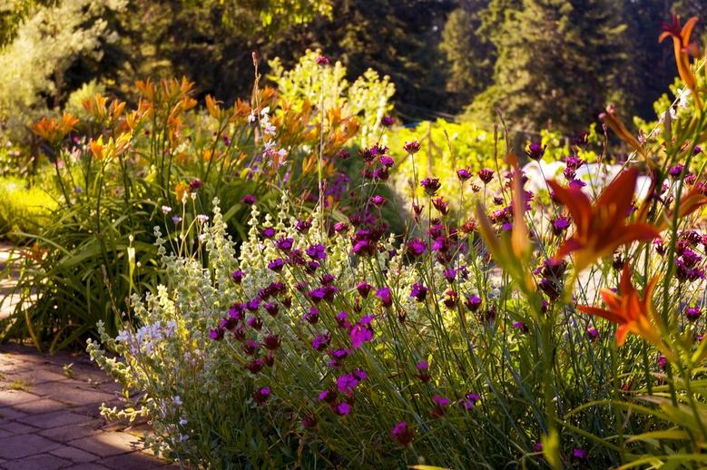 A Mediterranean Garden by jayscratch