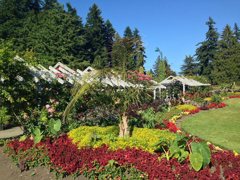 Stanley Park Gardens by Kyle Pearce