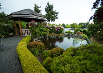 The Best Richmond, BC Golf Course: Quilchena Golf and Country Club