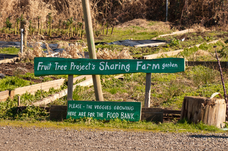 Rural Park Terra Nova Fruit Tree Garden