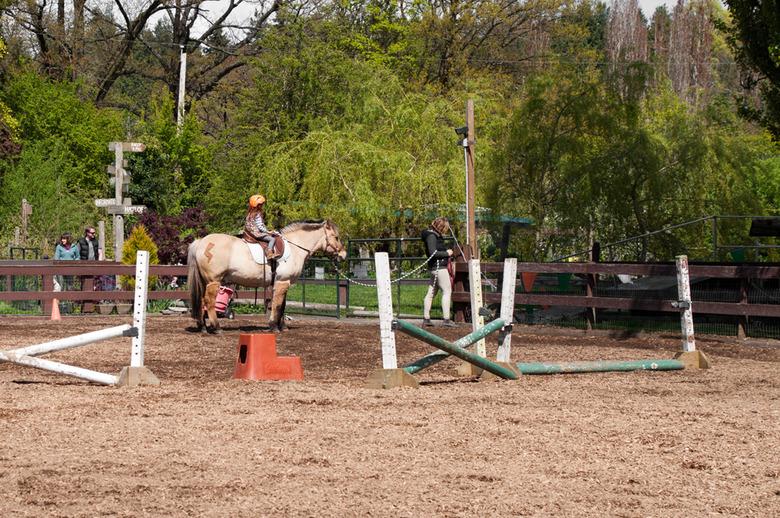 7 Horseback Riding