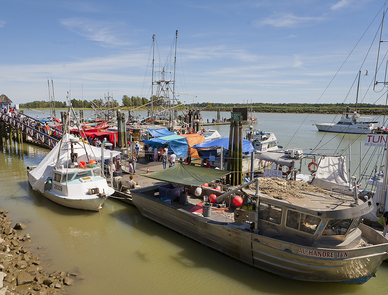 5 FIshermans Wharf