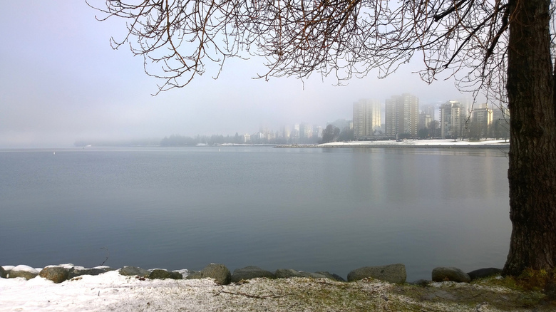 A Vancouver winter by Ruth Hartnup