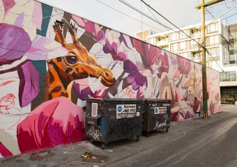 Vancouver Street Art: The Difference Between Art and Vandalism
