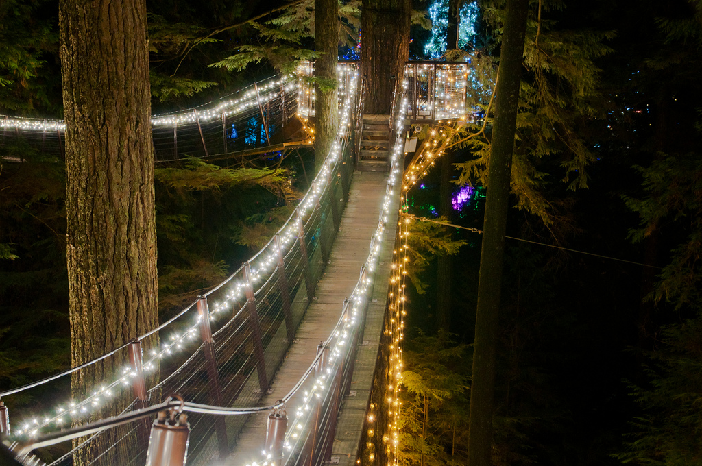 Capilano Suspension Bridge Vancouver Bc Photos