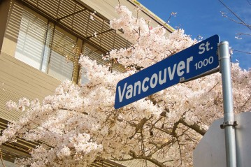 Vancouver-street-and-blossoms-by-Nick-Kenrick
