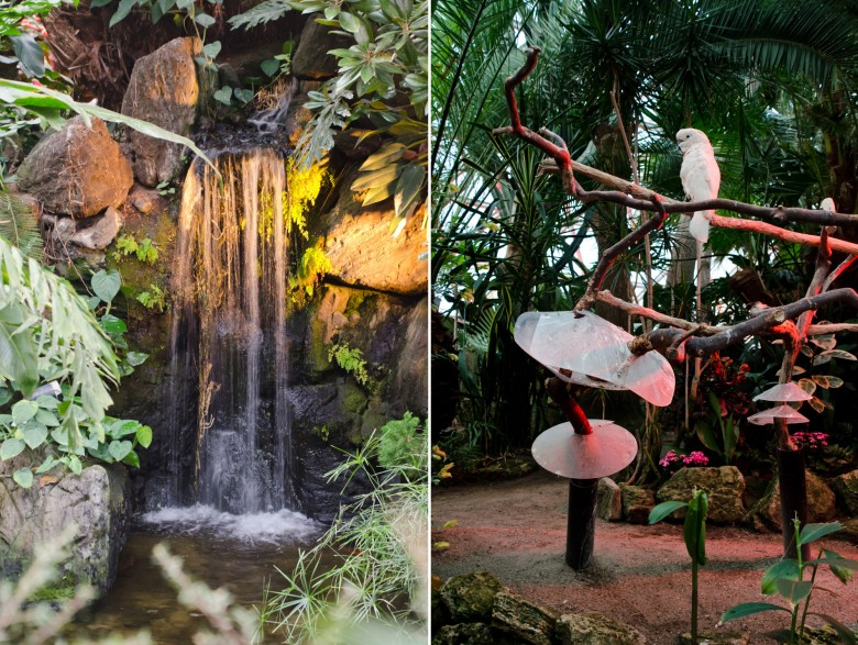 Bloedel_conservatory-5a