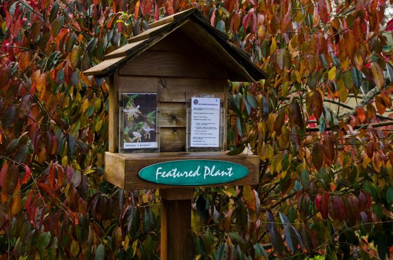 UBC_Botanical_Gardens-10