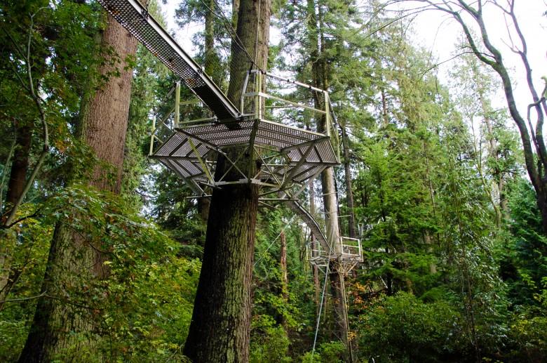 UBC_Botanical_Gardens-11