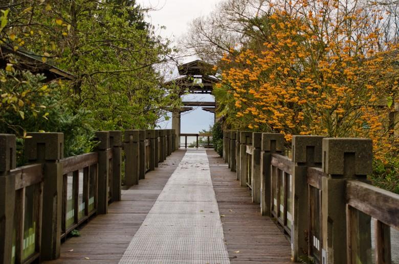 UBC_Botanical_Gardens-2