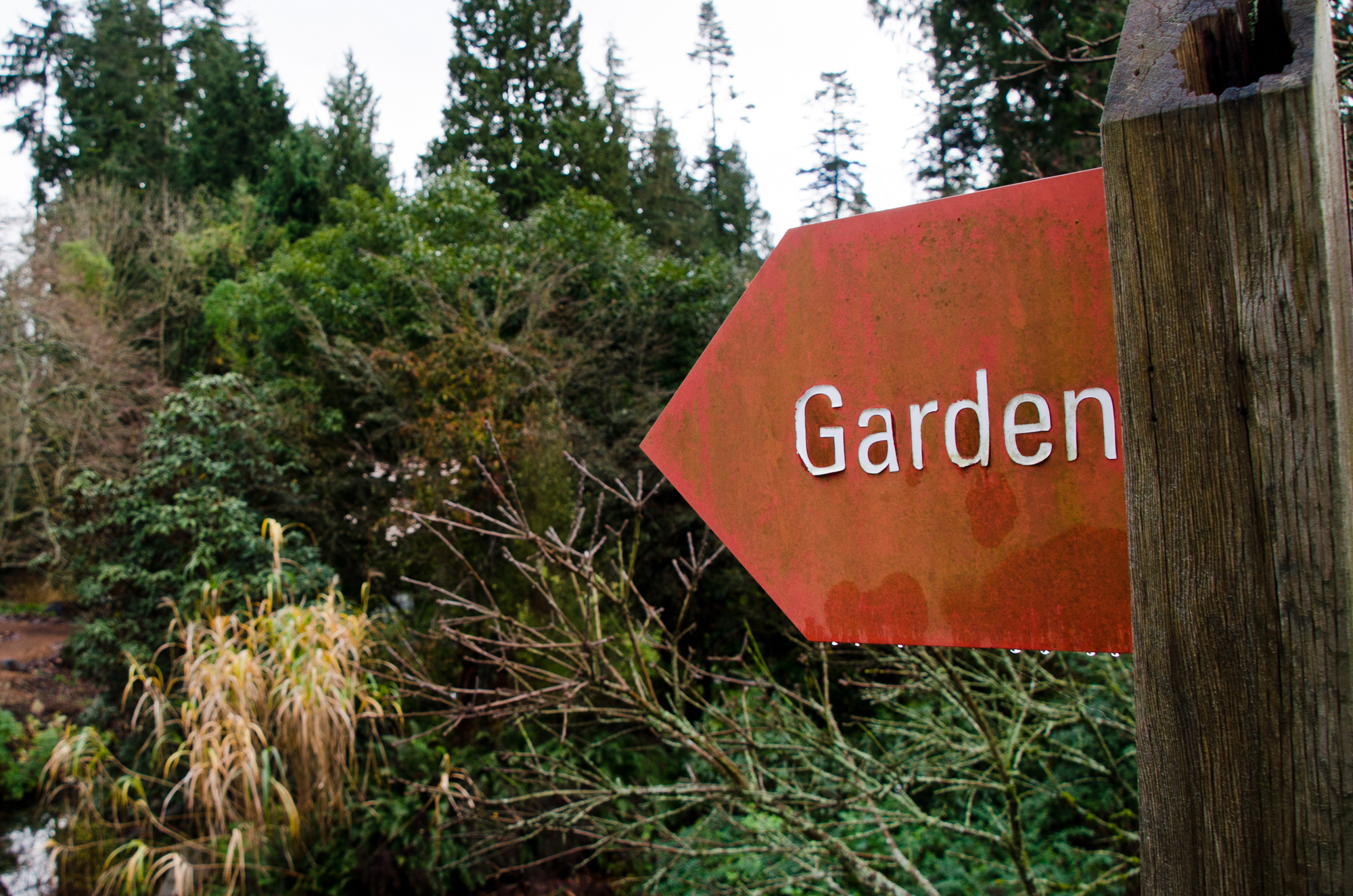 Photo Essay: Vancouver Gardens You Can Visit All-Year-Round ...