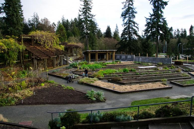 UBC_Botanical_Gardens-6