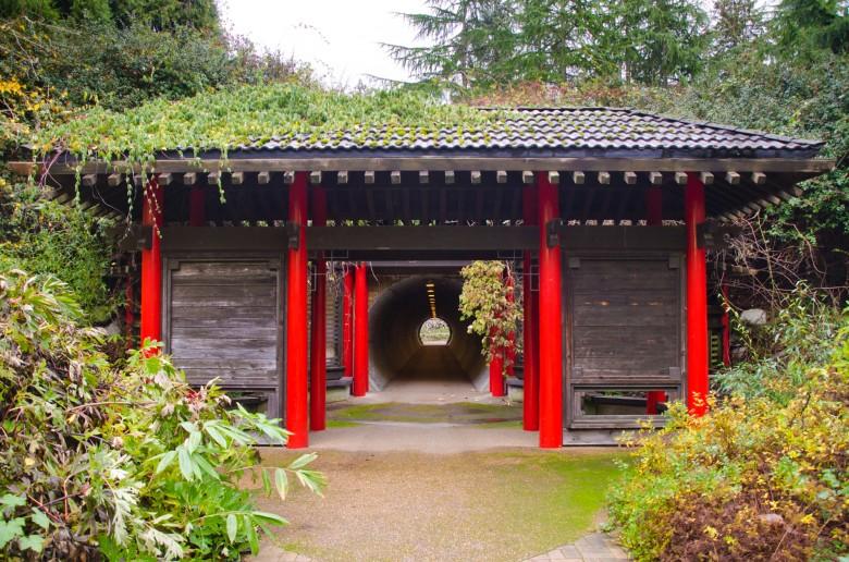 UBC_Botanical_Gardens-7